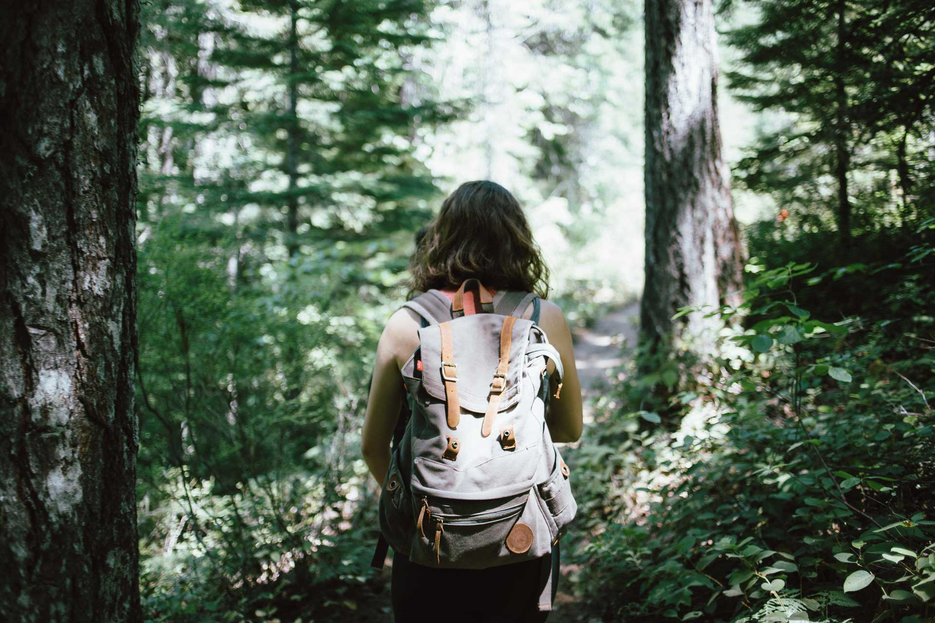 Woman hiking in a forest on the mountains